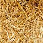 В Магаданской области с начала года добыли более 25 тонн золота